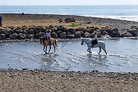 Horses cool the heels in the Mediterranean near Puerto Banus, Spain, when out for a Sunday canter along the Costa del Sol. 23rd April 2017, 201704233482<br />