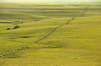 Stone fence of limestone and barbed wire at Tallgrass Prairie National Preserve in the Flint Hills near Strong City, Kansas, AGPix_0608