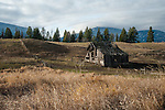 Idaho, Bonners Ferry. Old weathered barn in north Idaho with the Selkirk mountains in the background