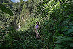 22 noviembre 2014<br /> Maria Francisco, 50 years old, in the jungle of Santa Cruz de Barillas (Guatemala) that it is sacred for the Mayas. She takes from the nature everything she needs to survive on november 22, 2014. The arrival of foreign companies to Latin America has provoked abuses of the rights of indigenous people and repression of their defense of the environment. In Santa Cruz de Barillas, Guatemala, the project of the Spanish hydroelectric Ecoener has caused murders, violent riots, the declaration of a state of siege by the army and the imprisonment of a dozen activists opposed to the project. They defend their territory and their river, called Cambalam. The river has for the Mayan people a special meaning and it is linked with their ancestors. A group of Mayan Indians, mostly women, has cut a path and has installed a resistance camp to prevent the enter of the company&rsquo;s machines. The prosecution has also provoked that some ecologists, with orders for their arrest, have been hidden for months in the Guatemalan jungle.<br /> <br /> In Coban, place located also in Guatemala, the hydroelectric Renace has been installed with threats to the population and false promises of development for the area. The company has also forbidden the access to the river for thousands of people and has no respected the close relationship of the Maya Indians with environment. Renace is a Guatemaltecan company but has given the contract of the  construction of the hydroelectric to the spanish company Cobra. As in Santa Cruz de Barillas, the project has divided the population and has caused riots. The project has very close families that live in extrem poverty. They are people that leave close to the hydroelectric but they don&rsquo; t have electricity at home. &copy;Calamar2/ Pedro ARMESTRE