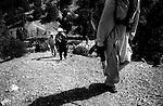 barwaiz raghzai hills, south waziristan, pakistan april 2004: men from the ahmedzai tribal lashkar spread out across the hills as they approach a suspected al qaeda hideout.<br />