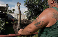 Man with tattoos and his pet ostrich in neighborhood of Wyndham AU.