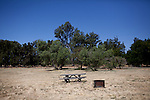 A closed campground at Brannan Island State Recreation Area near Rio Vista, Calif., June 13, 2012. Brannan Island is one of ten state parks to be taken over by a private concession in an effort to prevent mass park closures. CREDIT: Max Whittaker/Prime for The Wall Street Journal.CALPARKS.
