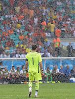 FUSSBALL WM 2014  VORRUNDE    Gruppe B     Spanien - Niederlande                13.06.2014 Torwart Iker Casillas (Spanien) im Regen