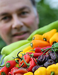 Foto: VidiPhoto<br /> <br /> DE LIER - Een tableau producten van Westland Peppers vertoont een Zuid-Amerikaans beeld: een kleurenspel in al z'n variaties en diversiteiten. De pepers van &quot;superzoet tot superheet&quot; zijn een feest om naar te kijken. Eigenaar Pieter Boekestijn weet niet eens hoeveel soorten uit de eigen kassen (9 ha. en twee locaties) en die van zijn telers in Spanje, Isra&euml;l en Mexico er jaarrond via de vestiging in De Lier worden ingepakt en verhandeld. &quot;De groep van pepers biedt een oneindige bron aan variaties&quot;, vertelt hij gepassioneerd. &quot;Ieder jaar proberen we een nieuwe, hippe, trend op te pikken.&quot; De pepertjes vinden gretig aftrek in heel Noordwest-Europa, zij het dat de Nederlandse consument nog niet veel verder reikt dan het standaard pepertje. Het is een zaak van lange adem en kost Boekestijn de nodige hoofdbrekens. Toch heeft hij er wel vertrouwen in. Inmiddels liggen de Westland Peppers in een Hollandse supermarktketen en weten diverse restaurants het exclusieve product ook te waarderen.