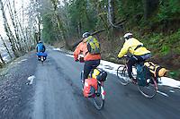 Olympic National Park - Washington State