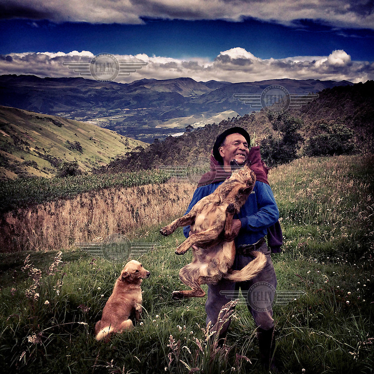 A man out collecting rabbit food on Ilalo, an extinct volcano, plays with his dogs.
