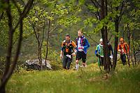 Lead group of Runners passing Selfjord, Lofoten Ultra Marathon, 2016