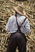 France, DOM, Martinique, Sainte-Marie: Rhumerie Saint-James AOC Rhum de la Martinique - Lors du tournage d'un film se passant en 1930, la canne &agrave; sucre est alors amen&eacute;e &agrave; la distillerie par le voie ferr&eacute;e, le train des plantations // France, DOM, Martinique, Sainte-Marie: Rum St. James, AOC Rum from Martinique - When shooting a film passing in 1930, sugar cane is then brought to the distillery by the railway, the train plantations<br /> [Non destin&eacute; &agrave; un usage publicitaire - Not intended for an advertising use]
