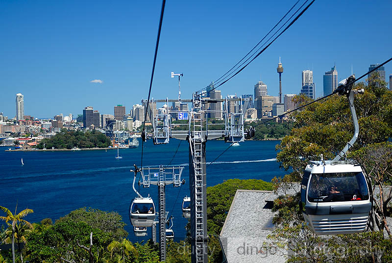 Sydney city skyline viewed from cable-car at Taronga Zoo. Sydney, Australia