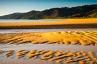 Sunrise on golden beach in Totaranui with sand patterns after high tide, Abel Tasman National Park, Nelson Region, New Zealand