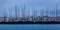 Early morning, Westhaven Marina, Auckland, New Zealand.
