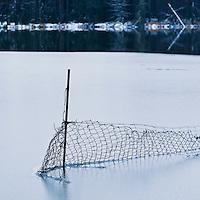 Fence freezes into partially frozen lake, Oberpfalz, Bavaria, Germany
