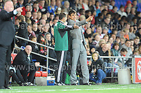 Cardiff City Stadium, Friday 11th Oct 2013. Wales manager Chris Coleman gives his opinion to a FIFA Official during the Wales v Macedonia FIFA World Cup 2014 Qualifier match at Cardiff City Stadium, Cardiff, Friday 11th Oct 2014. All images are the copyright of Jeff Thomas Photography-07837 386244-www.jaypics.photoshelter.com