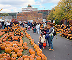 Crowds viewing jack O Lanterns at Keene Pumpkin Festival