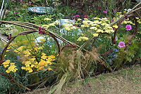 Rustic willow Fence, Nassella tenuissima ornamental grass, Achillea yarrow, cosmos, Eryngium, water pond features, in flowering perennial garden