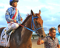 HALLANDALE BEACH, FL - MARCH 04:  Jockey Javier Castellano with Gennevera  head into the winners circle after winning the $400,000 Xpressbet Fountain Of Youth Stakes (Grade II) at Gulfstream Park on March 04, 2017 in Hallandale Beach, Florida. (Photo by Liz Lamont/Eclipse Sportswire/Getty Images)
