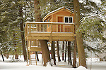 Tree house in winter with snow.