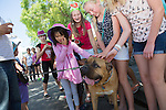 Kids swarm Bull Mastif, Mojo, during the 34th Annual Los Altos Arts & Wine Festival July 13.