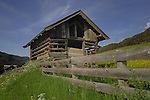 Cattle sheds and farm properties. St Anton area, Tyrol, The Alps, Austria.