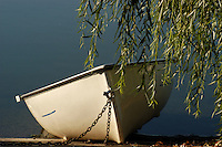 A rowboat sits on a dock near the water's edge.  A willow tree provides some cover with its branches