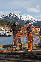 Fishermen repair holes in purse seine net for Herring, Sitka, Alaska
