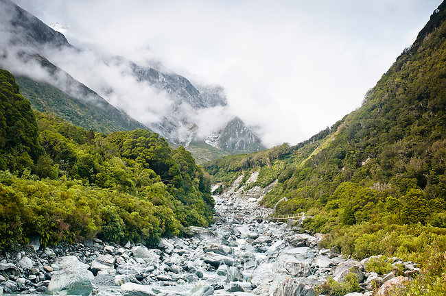 Butler River South Branch near Whataroa, Southern Alps behing, South Westland, West Coast, New Zealand