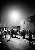 Elephants in Ringling Brothers  Cicus