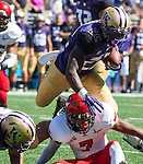 Washington Huskies'  running back  Lavon Coleman (22) runs for a 9-yard run against the Eastern Washington Eagles' at Husky Stadium September 6, 2014 in Seattle. Huskies out lasted the Eagles in a high powered shootout 59-52 in the third highest scoring game in Husky history. ©2014. Jim Bryant  Photo. All Rights Reserved