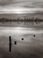 Four logs, probably the remains of an old wharf, lie in the still water of the Po River near to Carignano in Piedmont, Italy. Taken on a cold and foggy morning of January at dawn.