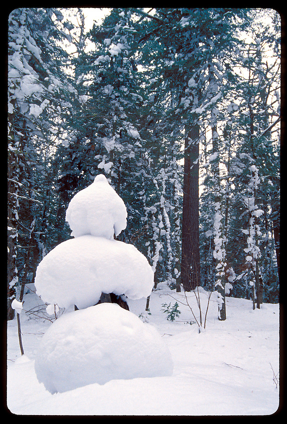 A NATURALLY FORMED SNOWMAN IN THE ESTIVANT PINES NATURAL AREA OF THE KEWEENAW PENINSULA NEAR COPPER HARBOR, MICHIGAN.
