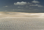Sand dunes, Nambung National Park, Perth, Australia