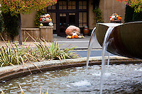 The entrance to the Franciscan Estates with the water fountain in the foreground and the entrance boasting pumpkins and other gourds, including one giant pumpkin.