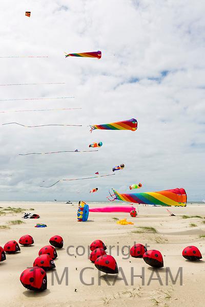 Kite festival of bright color kites in the sky above Rindby Strand beach on Fano Island - Fanoe - South Jutland, Denmark