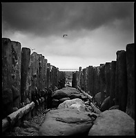 Sea Groins, Lynmouth, North Devon | Black and White Photography