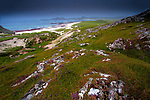 Coastal scenery with grass, heather and rocks on coastal path in rural Scotland in summer