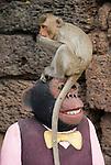 Monkey sits on Statue Eating an Orange