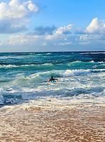 A surfer paddles out to sea  at Ho'okipa Beach, East Maui.