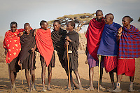 The young Maasai boys in black robes, or lubegas, are still in the process of healing after circumcision. Once initiated, they will become warriors taking over from senior warriors who will themselves get married and join  the ranks of elders.  The new warrior stage they are about to enter may last up to ten years.  The last stage is celebrated with the orngesherr, or  junior elder initiation during which time the warrior's wife will shave her husband's long hair.  Once they become junior elders, they will be allowed to build their own homesteads and oversee everything in the village.