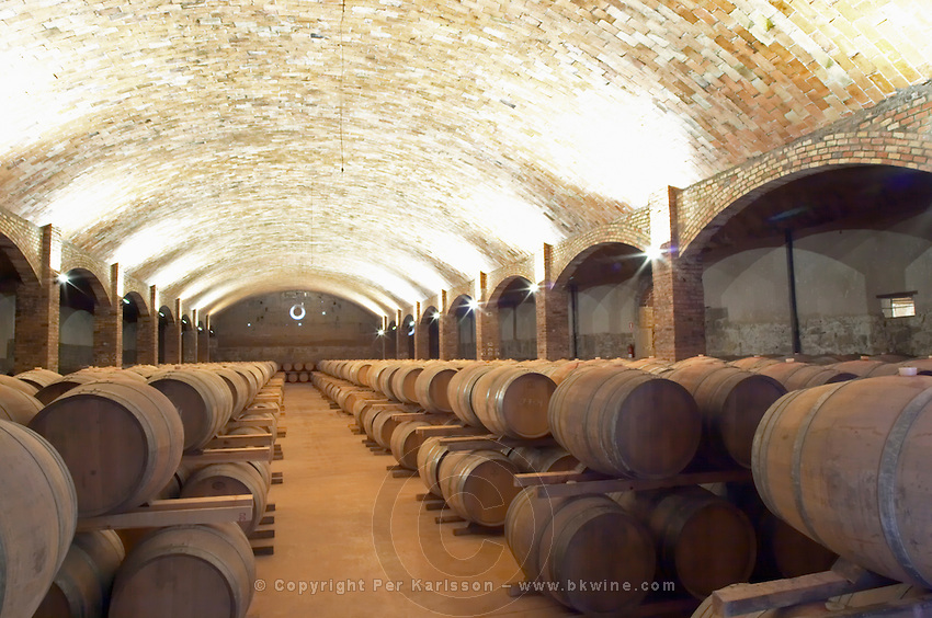 Oak barrel aging and fermentation cellar. Castel del Remei, Costers del Segre, Catalonia, Spain.