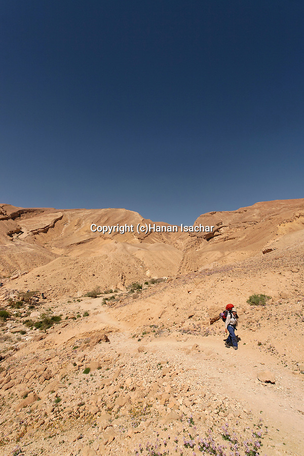 Israel, Hikers in Wadi Gov at the Negev desert