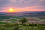 Washington, Eastern, Palouse, Steptoe. Sunset color over the rolling hills of the Palouse in Spring.