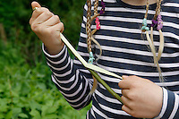 Kinder basteln sich einen Apfeltrockner, Kind zieht die Rinde von einem frischen Weidenzweig, Apfel, Äpfel, Äpfel trocknen, Trockenobst, Apfelringe, apple, apples