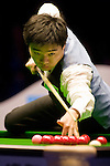 Ding Junhui