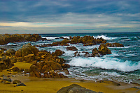 &quot;OCEAN BOULEVARD&quot;<br />