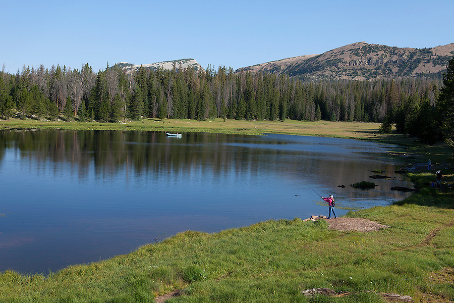 Uinta Wasatch Cache National Forest, UTAH