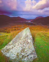 Boulder at Ladies View Killarney National Park Republic of Ireland Sept. Killarney Mountains County Kerry 45v IC2