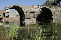 Roman Bridge, 2nd century AD, Bosra, Syria Picture by Manuel Cohen