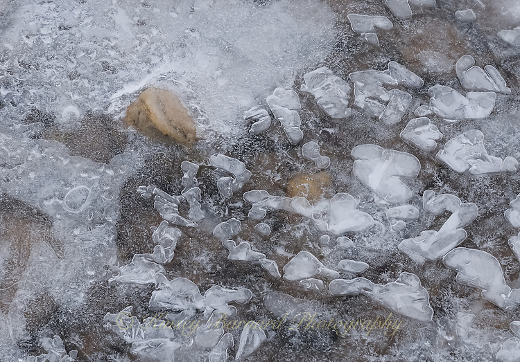 &quot;RIVER ICE-11<br /> <br /> Ice formations along a river's edge creating intricate and beautiful designs