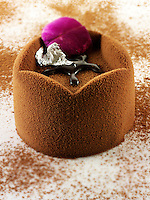 modern designed chocolate cake with a sponge case and chocolate filling, covered with cocoa powder